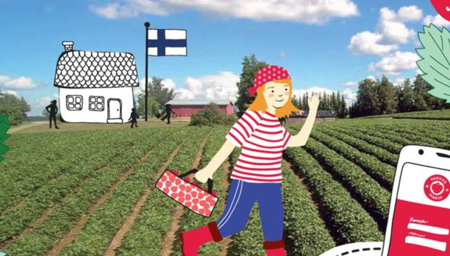 Marjaviljelyn vastuullisuus suomessa